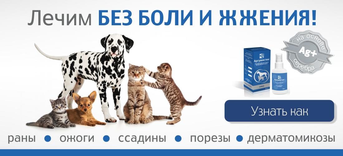 Лечение ран у животных